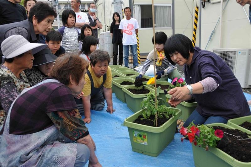 岡井先生と一緒に野菜を・トマト大作戦