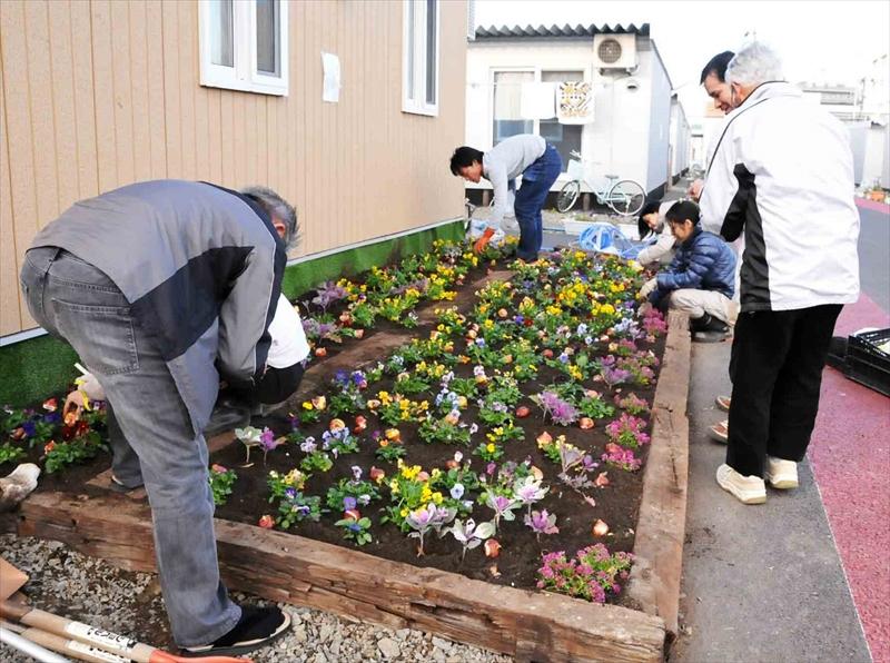 みんなの花壇作り(荒井小学校予定地仮設住宅)
