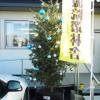石巻渡波第2仮設住宅 (水産高校第2グランド仮設住宅) クリスマス会