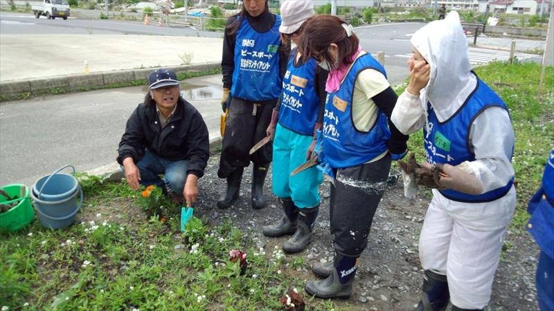 魚町中央分離帯の雑草取り&花植え