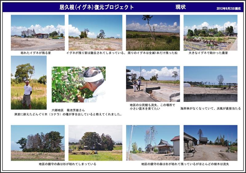 活動記録〜イグネの今〜_2012_9-4
