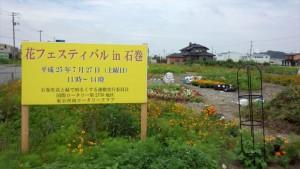 活動記録〜花フェスティバル in 石巻〜_2013_7-21