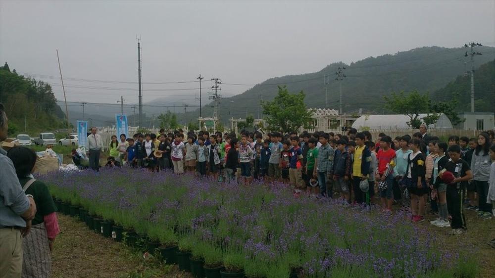 河北中学校の皆さんが鉢植え_2015_5-28
