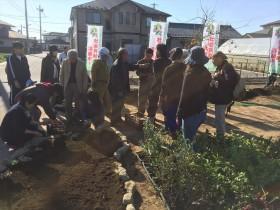 久保野キッズアグリガーデンの作業スタート_2015_10-31