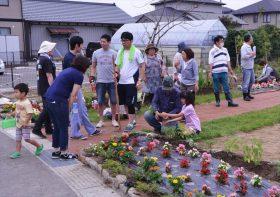 定期ガーデンの手入れ_久保野キッズアグリガーデン