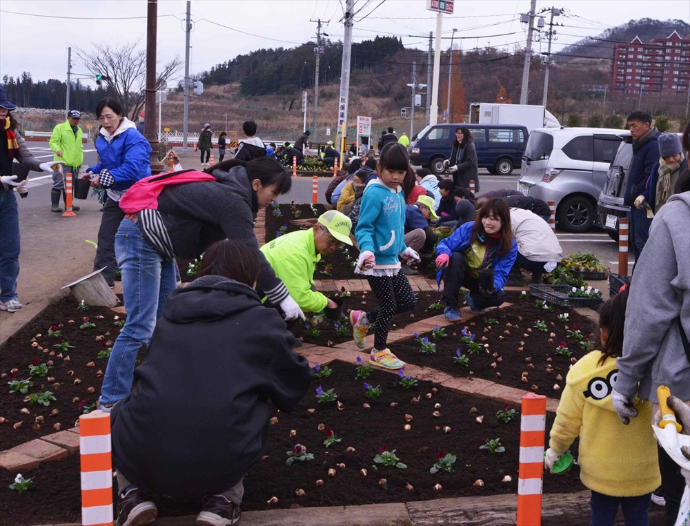 仙台錦ケ丘にて花の植栽