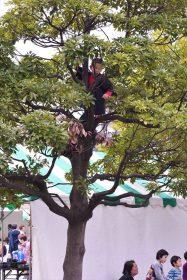 仙台市市民広場で開催中の新
