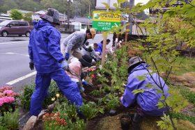 福島県双葉郡川内村にて花壇に宿根草を植えました。