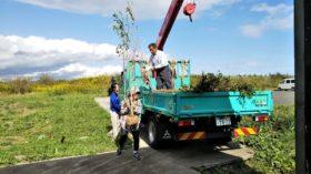 横浜農業協同組合植木部会の支援樹木のお届け