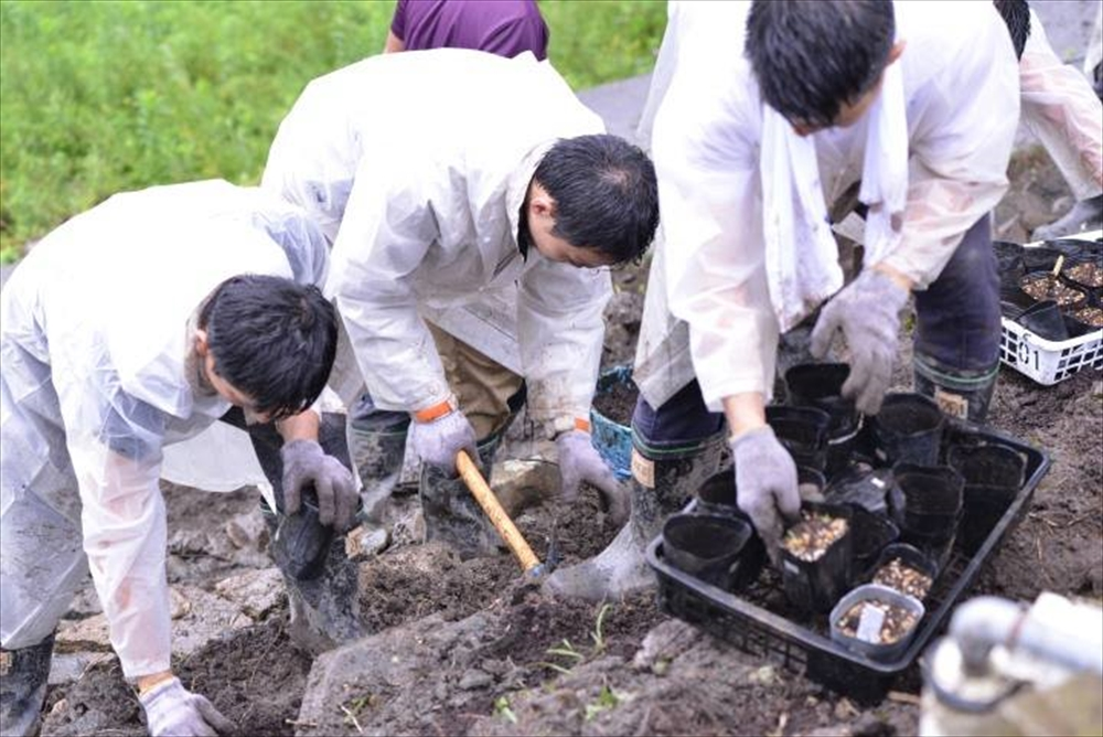 雄勝_リコリスの丘支援活動_2015-8-29