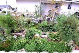 昨年9月に山元町坂元地区に作った花壇