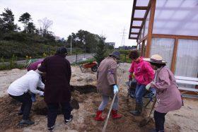 横浜JA植木部会からの東日本大震災復興支援事業