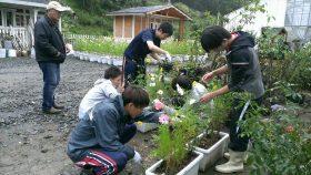 龍谷大学の学生たちによるボランティア活動