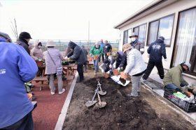 復興公営住宅集団移転地の花壇支援