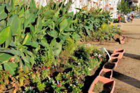 仙台市立榴岡小学校の花壇つくりの支援