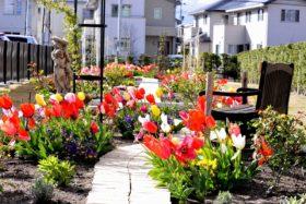 仙台市若林区荒井東公営復興住宅の小さなローズガーデン