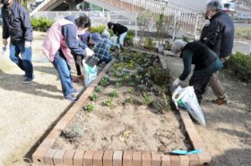 仙台市若林区大和町復興公営住宅での花壇つくり